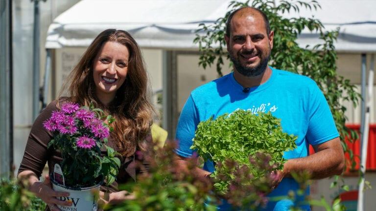 Choosing Perennials | Angiuli's Farm Market